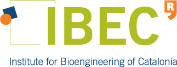 IBEC Faster Future Logo